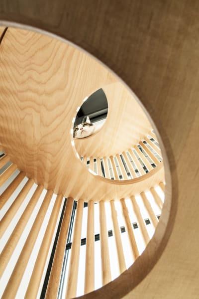 Den Katzenbaum aus Holz entwarf Yoh Komiyama für Rinn. Spielplatz und        skulpturaler Solitär zugleich!