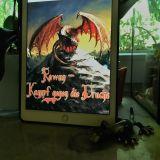 """Rowan – Kampf gegen die Drachen"" von Aileen O'Grian"