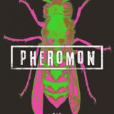 Pheromon – EXKLUSIVE LESEPROBE Sie riechen dich!
