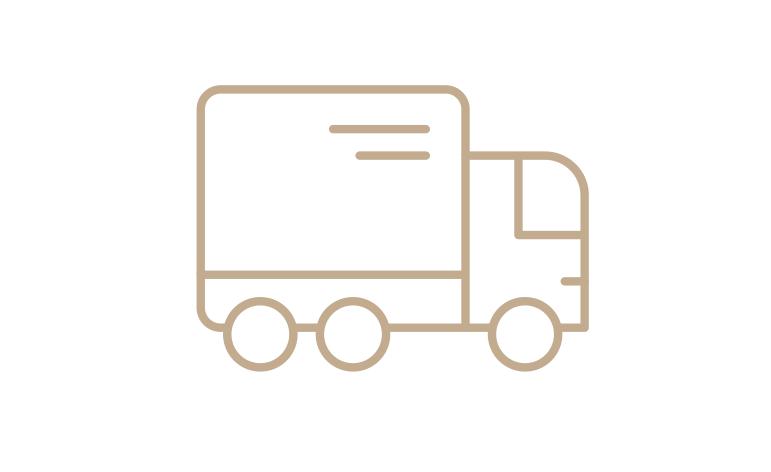 Dreamspot Delivery Icon