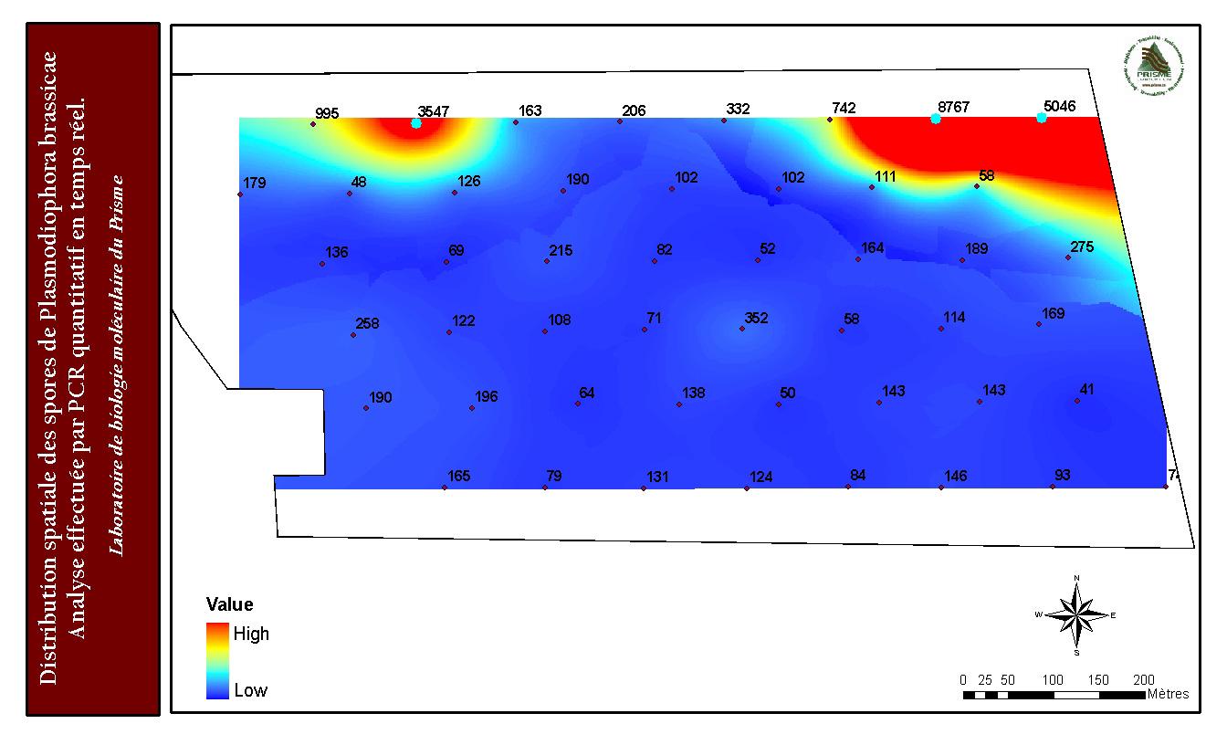 Carte-de-dispersion-des-maladies-du-sol