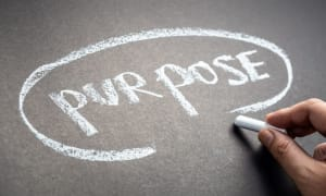 Define your marketing purpose