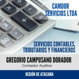 GREGORIO CAMPUSANO DORADOR - Camdor Servicios Ltda