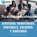 AVM CONSULTORES SPA