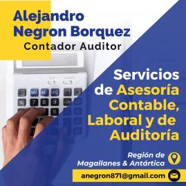 Alejandro Negron Borquez
