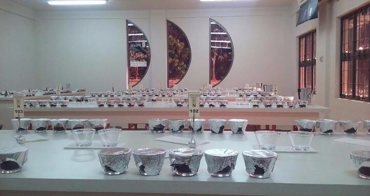 MELHORES CAFÉS DO PARANÁ SERÃO CONHECIDOS EM BREVE