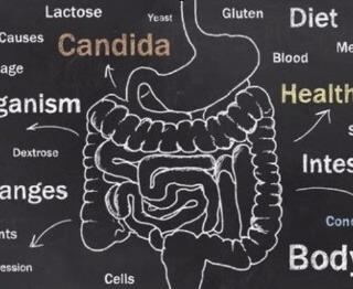 Tratamento Ortomolecular da Candidíase