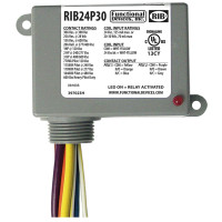 RIB24P30 - Functional Devices Enclosed Relay 30Amp DPDT 24Vac/dc