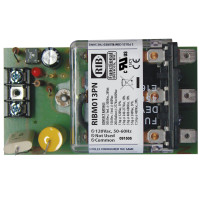 RIBM013PN - Relay, 20Amp, Panel Mnt,TPDT, 120Vac