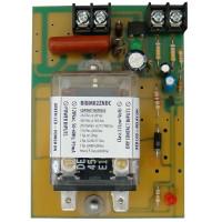 RIBM02ZNDC - Relay Panel Mnt,30 Amp,DPDT,208/277Vac
