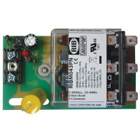 RIBM043PN - Relay,20Amp, Panel Mnt,TPDT, 480Vac