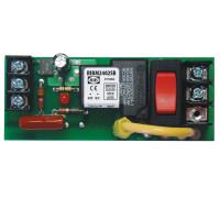 RIBM2402SB - Track, 20amp spst+sw.24vac/dc/207-277vac,relay