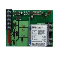 RIBME2402P - Relay,20 Amp, Panel Mnt, DPST, 24V/208-277 Pwr