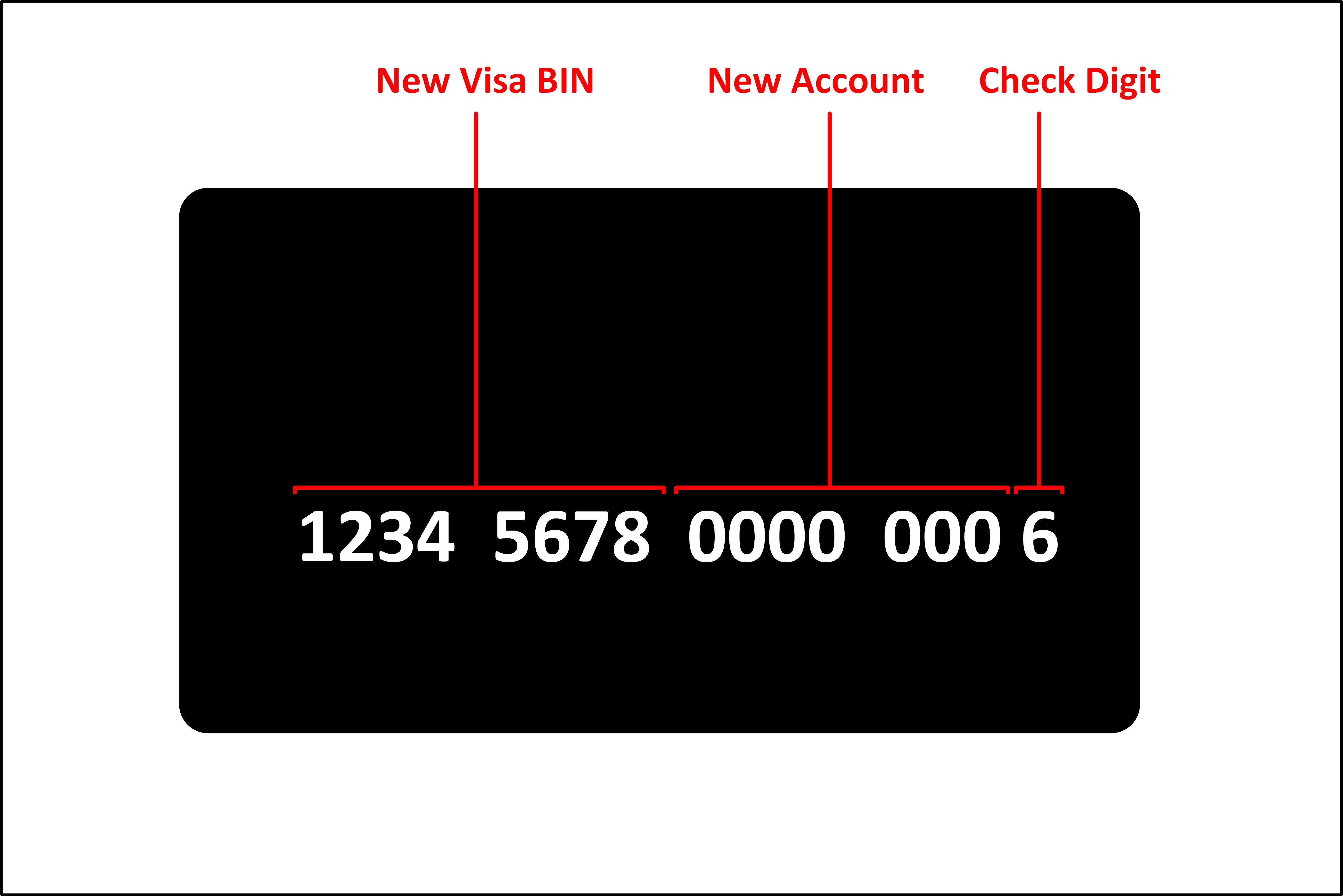 New Visa BIN Structure