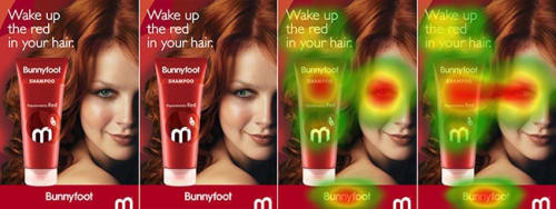 An example of how tweaks to an ad for shampoo influenced what the users looked at.