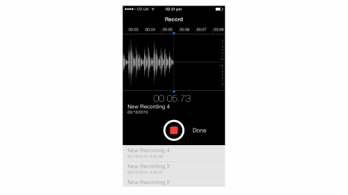 A screenshot of a recorder app.