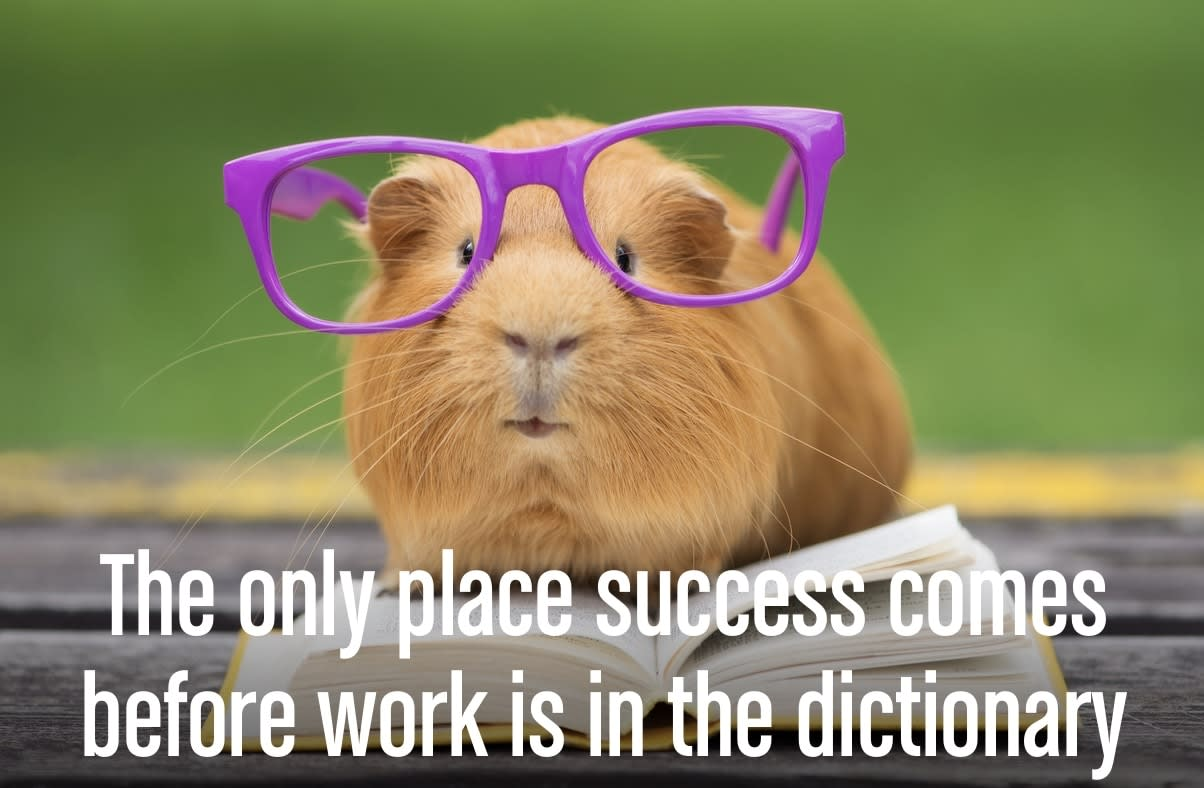 """A motivational quote: """"The only place success comes before work is in the dictionary."""""""