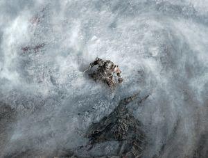 Dragon Shout - Skyrim, Bethesda Softworks ©