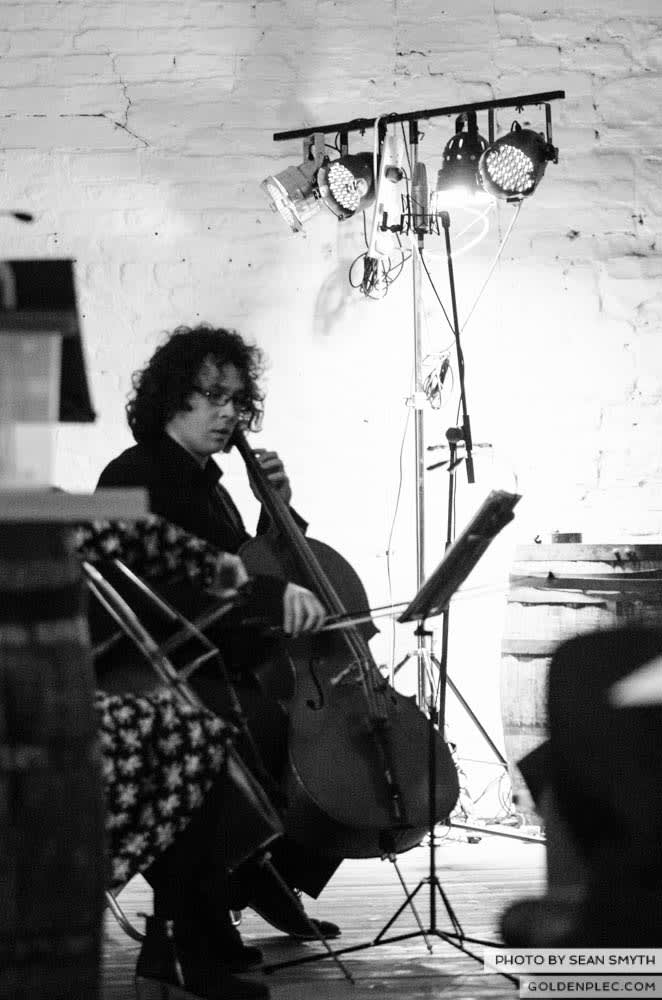 teada-orchestra-at-south-studios-by-sean-smyth-27-2-14-21-of-50
