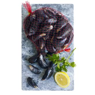 musslor i nät pris