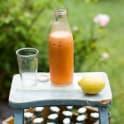 Morotsjuice med ingefära och citron