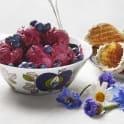 Kvargglass med blåbär och honung
