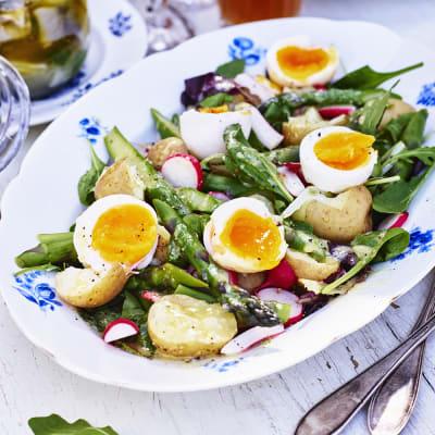 Bild på Somrig grönsallad med sparris och ägg