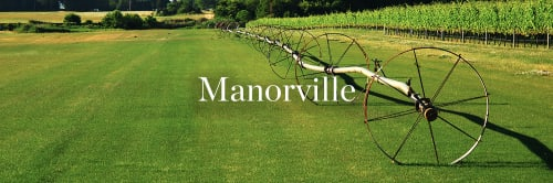 banner image for Manorville
