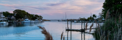 banner image for Peconic