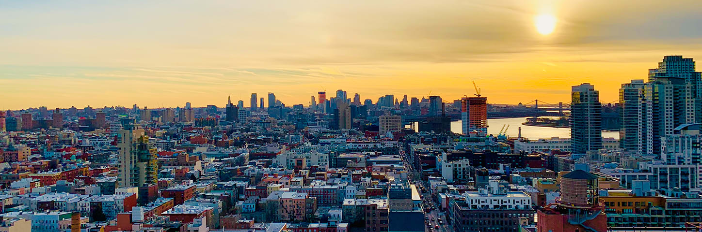 banner image for Prospect Heights