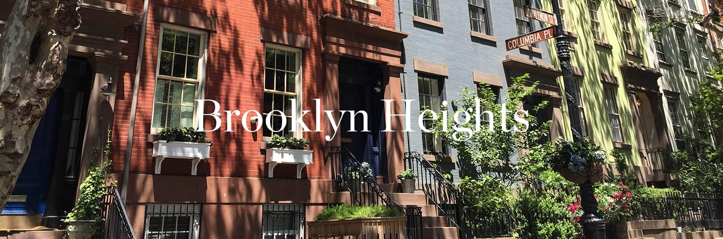 banner image for Brooklyn Heights