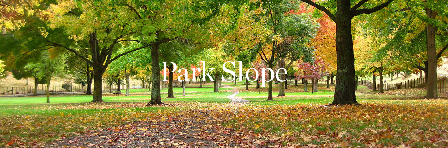 banner image for Park Slope