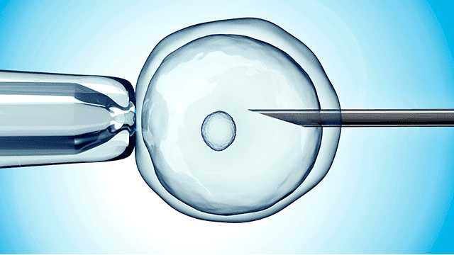 Cost of IVF in Nigeria (2020): All You Need to Know