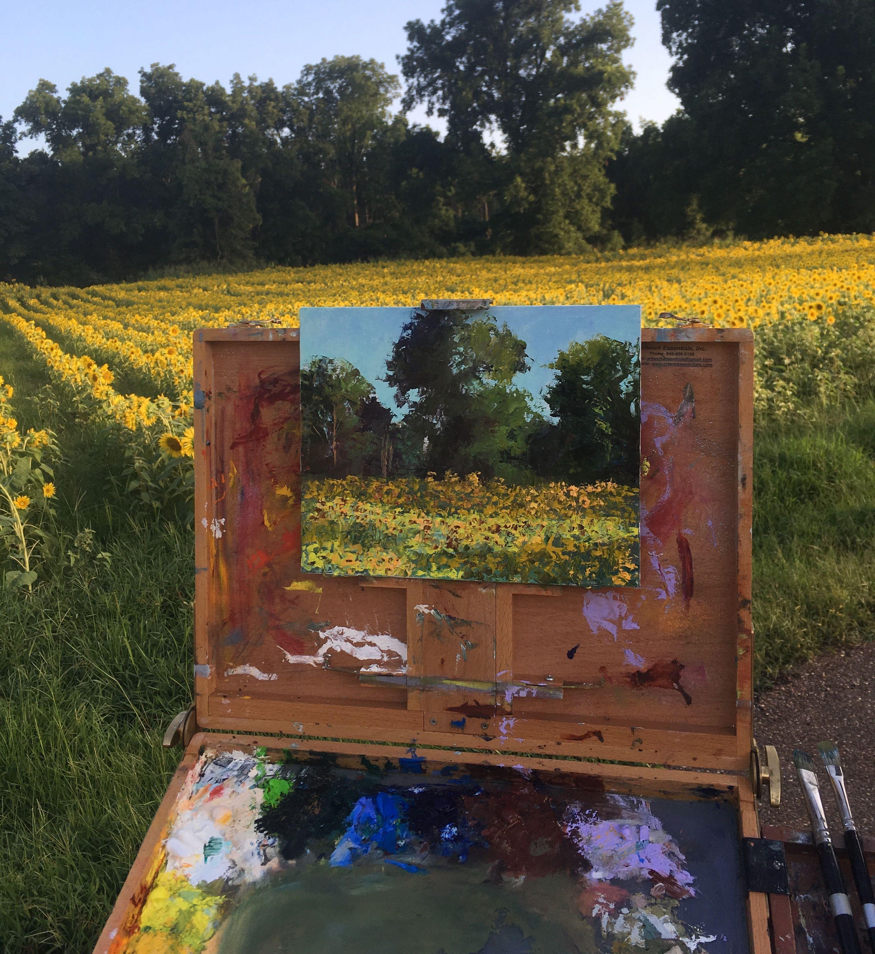 Sunflower fields - Artist Carol Roark.jpeg