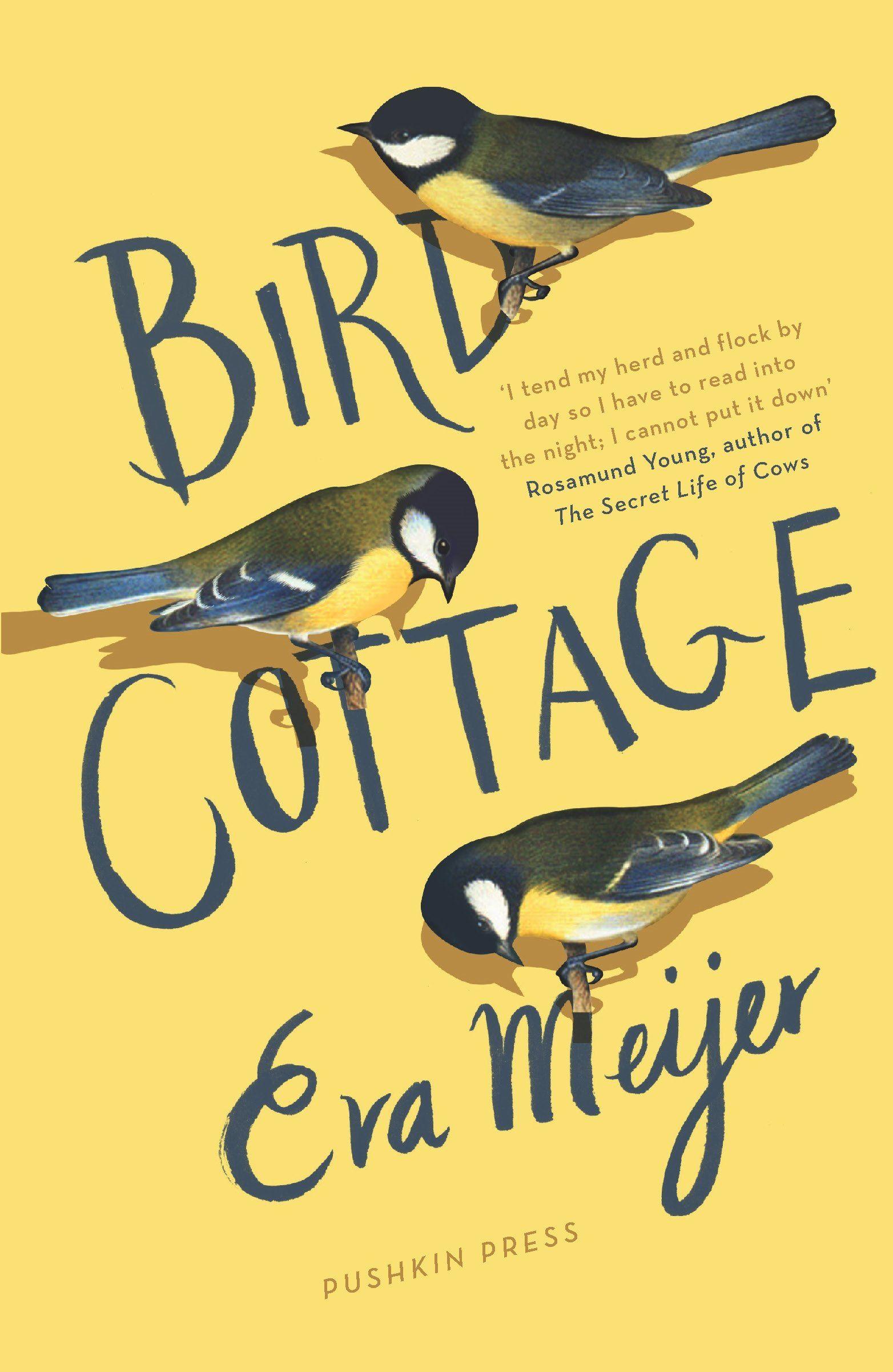 bird cottage.jpg