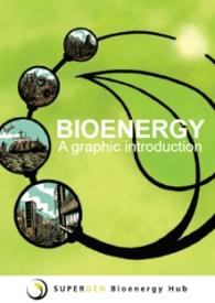 Bioenergy: a graphic introduction