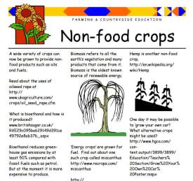 Non-food crops