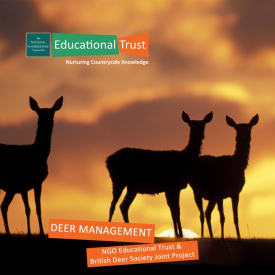 Countryside Conservation - Deer Management