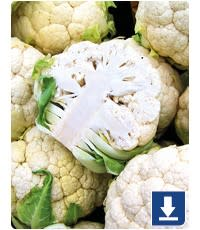 Cauliflower investigations - Tractor Ted Farm School
