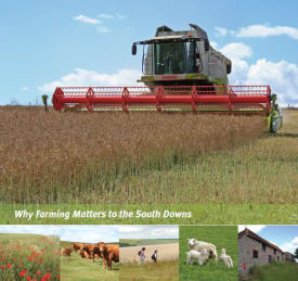 Why Farming Matters to the South Downs