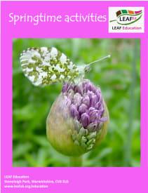Springtime activities - home educator version