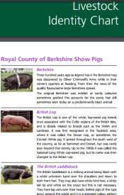 Livestock Identity Chart