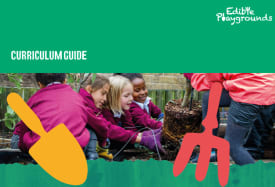 Edible Playgrounds curriculum guides: Year 1 - Year 6