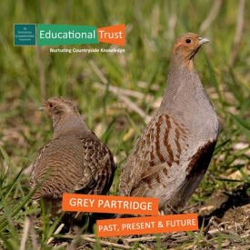 Countryside Conservation: Grey Partridge - Past, Present and Future