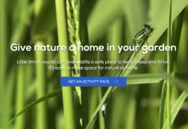 Give nature a home in your garden
