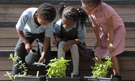 Local School Nature Grants open!