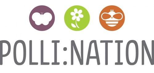 Polli:Nation schools programme