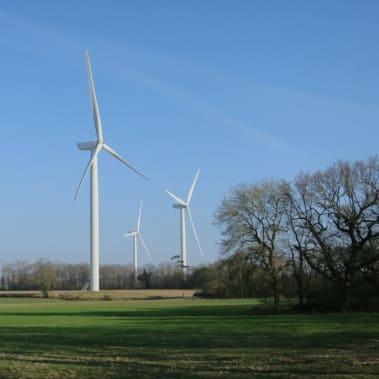 CASE STUDY: Renewable energy on the farm