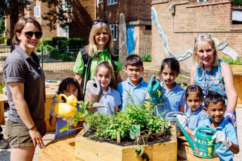 RHS support for community gardening