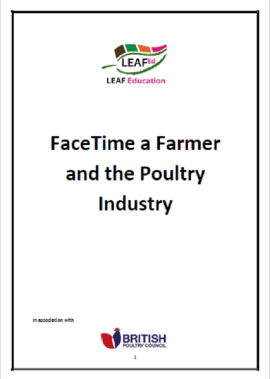 Farmer Time and the Poultry Industry